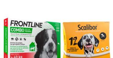 mejores antiparasitarios para perros